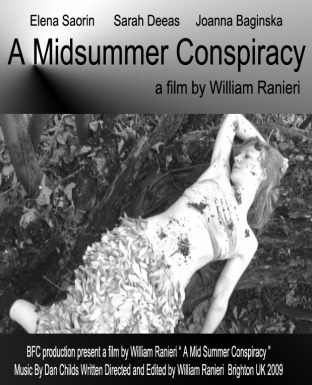 A Midsummer Conspiracy Cover